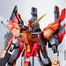 METAL BUILD Destiny Gundam Heine Custom
