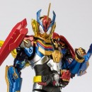 S.H. Figuarts Kamen Rider Grease Perfect Kingdom